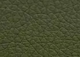 Standard-Furniture Polstersessel Theo 58 85 61 49 47 72 PU Kaiman green 26