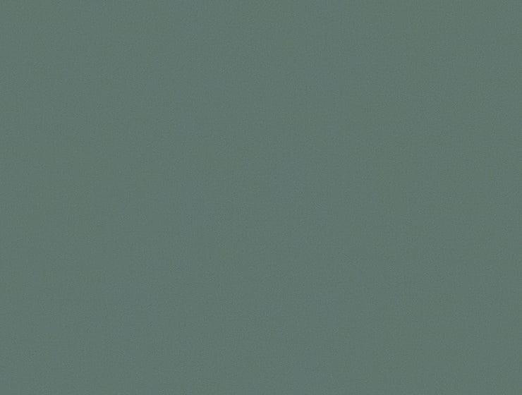 Bert Plantagie Stühle Speed Stuhl Speed 46 98 66 48 46 zweifarbig Stoff C Alma 85 mint
