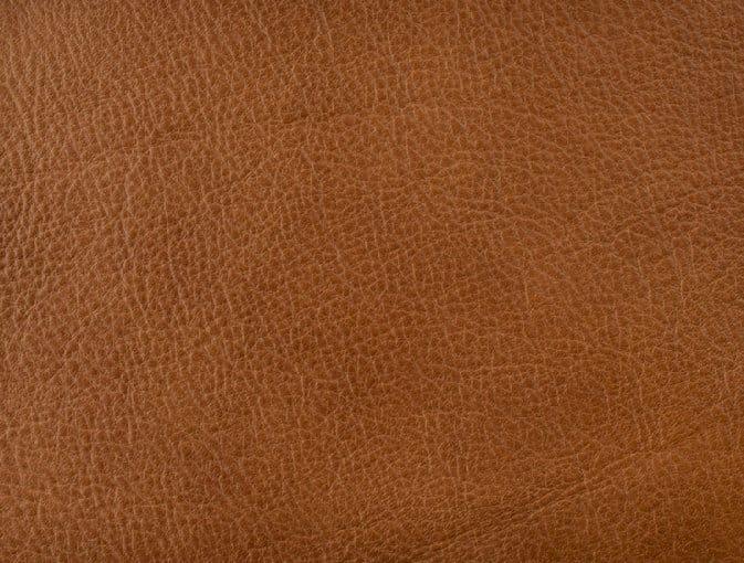 Bert Plantagie Stühle Speed Stuhl Speed 46 98 66 48 46 zweifarbig Leder 2 Bold cognac