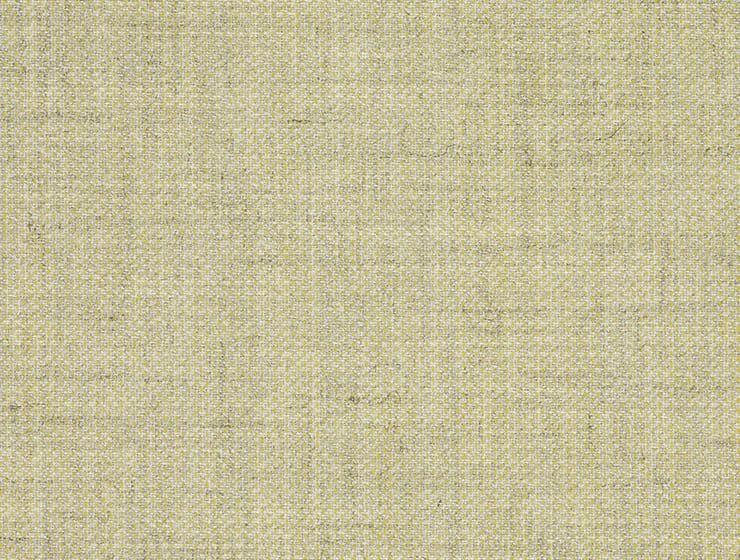 Bert Plantagie Stühle Merengue Merengue 46 89 63 47 46 Stoff D Clara slate yellow 423