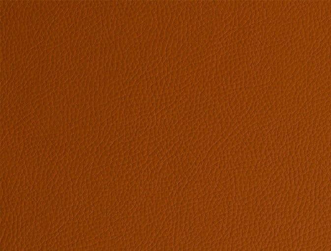 Bert Plantagie Stühle Speed Stuhl Speed 46 98 66 48 46 zweifarbig Leder 1 Tendens papaya