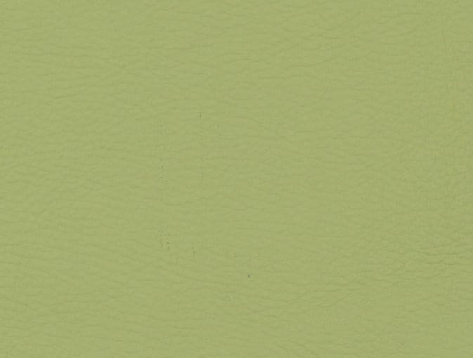 Bert Plantagie Stühle Speed Stuhl Speed 46 98 66 48 46 zweifarbig Leder 1 Tendens pistache