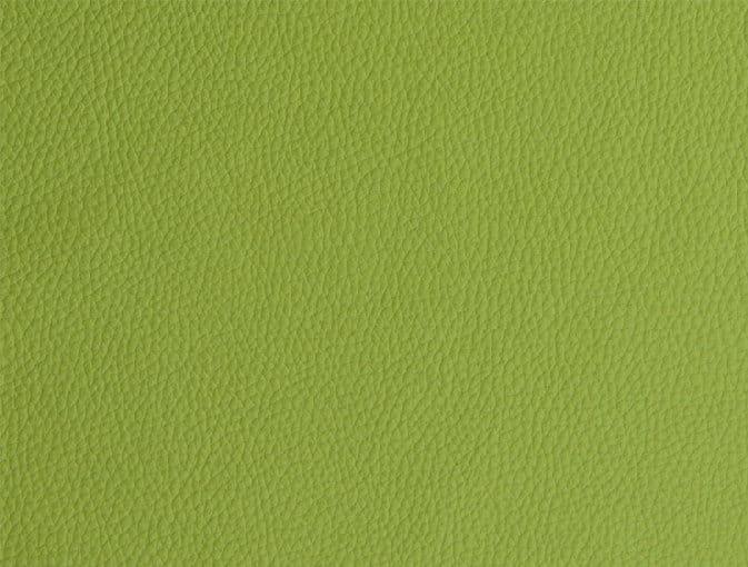 Bert Plantagie Stühle Speed Stuhl Speed 46 98 66 48 46 zweifarbig Leder 1 Tendens springgreen