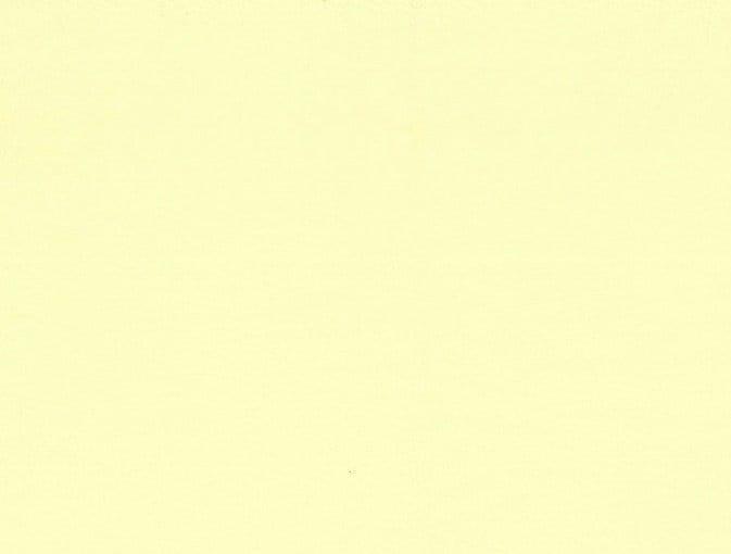 Bert Plantagie Stühle Speed Stuhl Speed 46 98 66 48 46 zweifarbig Leder 1 Tendens vanilla