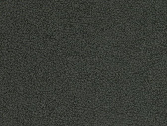 Bert Plantagie Stühle Speed Stuhl Speed 46 98 66 48 46 zweifarbig Leder 1 Tendens verde