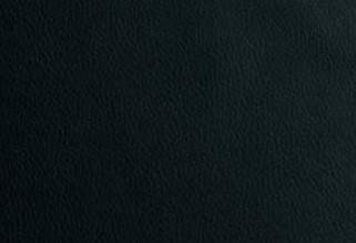 Klose Bänke E30 Wunschbank Einzelbank 3043 zweifarbig Comfortex 6 schwarz