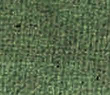 Nehl Schlafsofa Brüssel Lounge-Sessel Sessel 78 77 62 47 48 V Elite Amara uni schilf 72 50258
