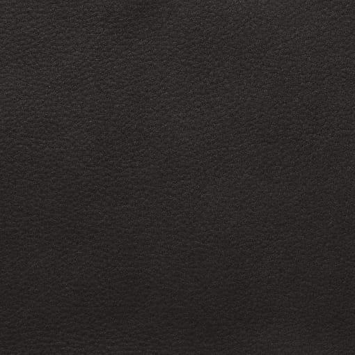 Silaxx Stühle 6253 Freischwinger 1C - mit glattem Rücken 48 95 61 51 44 Leder Bison (Nubuk) Nubukleder Bison - 81 anthrazit